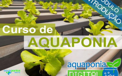 Curso de Introdução à Aquaponia